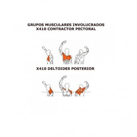 Máquina de musculación Deltoides posterior BH X410