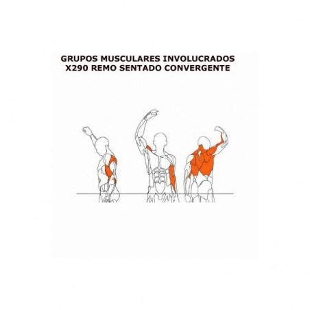 Máquina de musculación Remo sentado apoyo pecho BH X290