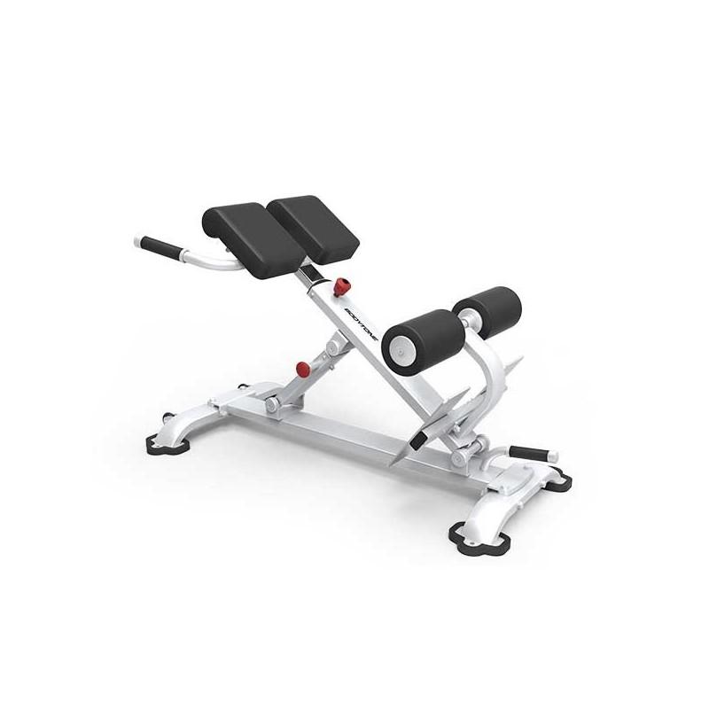 Máquina musculación profesional banco hiperextensiones EB09