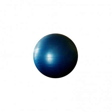 Pelota pilates fit-ball o pelota suiza 65 cm